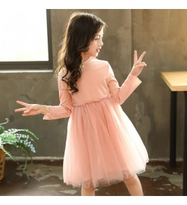 Kids Children Girl Cute Pink Mesh Bridesmaid Formal Long Sleeve A Shape Dress